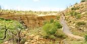 The Mesa Verde Hiking Trails.