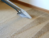 Tips And Tricks To Finding A Professional Carpet Cleaner