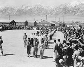 The Japanese Americans are being led through the camp heavily guarded