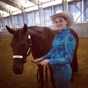 Horse Shows!
