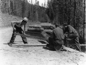 Men logging