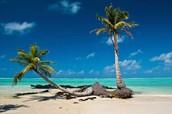 Une belle plage de Magagascar