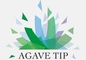 We Are Agave Tip