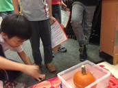Science with Second Grade