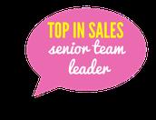 Top Sales by Rank - Senior Team Leader