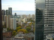 1001 Bay Street #3007..Location, Location..