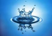 Vital Functions of Water