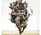 Elephant holding Humanity