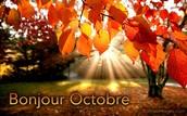 Thinking of sunnier Fall days!