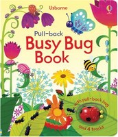 Pull Back Busy Bug book
