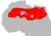 Sahara Region