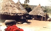traditional African dwelling