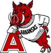 1. University of Arkansas