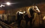 Coal Horse
