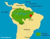 Where is The Amazon Rainforest?