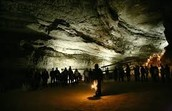 Mammoth Cave Tours