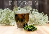 Nettle-Peppermint Tea