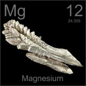 Magnesium Information
