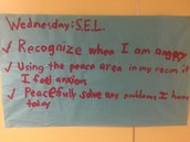 Pillow student-made poster w/ SEL focused Coordinated School Health challenge!
