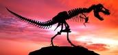 Dinosaurs are extinct