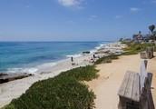 Across the Street from the La Jolla Windansea Beach- Gorgeous Ocean Views