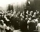 First Transport to Aushwitz