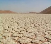 The First Problem: Desertification