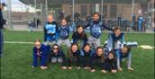 Girls' Sports Team
