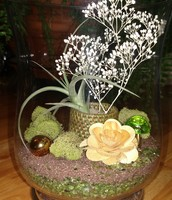 Open Style Floral Terrarium
