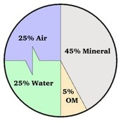 The Rate of Soil Formation