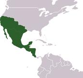 Tejas Mexico
