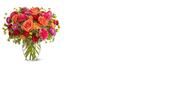 זר של ורדים לספר: פרחים בגנך
