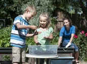 Grades K-6th are welcome to join us for a fun and educational afterschool activity on vermicomposting, presented by Northwest Indiana Solid Waste District.