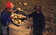 Child Farmers