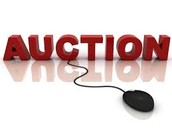Auction program