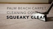 Palm Beach Carpet Cleaning Company | Carpet Cleaning Services Squeaky Clean