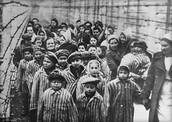 Some prisoners in the Holocaust.