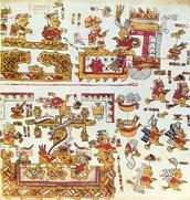 Mixtec codices