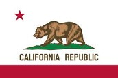California's State Flag