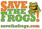 Ask About SAVETHEFROGS! Art Contest!