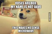 Doge, the king of all memes