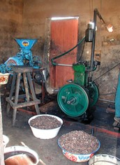 Peanuts are Hand-Ground Using this Multifunctional Platform