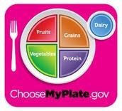 My Plate Gov.