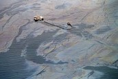 Area of OIl Spill