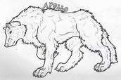 Apollo's Sacred Animal : The Wolf