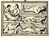 Smallpox along the Columbian exchange