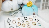 New Twist Lockets, New Earrings and so much more!