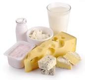 Leche, queso y yogur