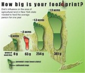 Your Food-print!