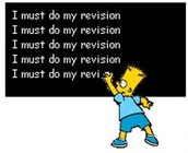 """""""Revision Vision"""""""
